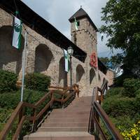 Grauer Turm Kirchheimbolanden.jpg